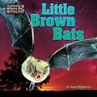 Little Brown Bats by Joyce L Markovics (Hardback, 2015)