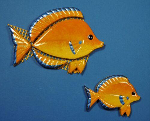 Grössen Mosaiksteine-Korallenfisch-Zwergkaiserfisch-Fisch-in 2 verschied