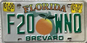 Florida Peach Brevard County American License USA Number Plate F20 WNQ