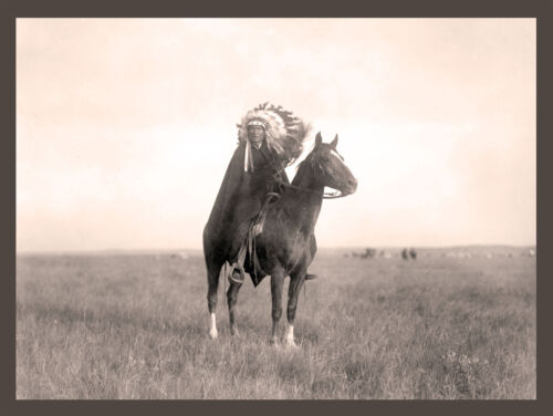 """Southwest PAINT Horse Native American 1907  Sioux Indian 14/""""x11/"""" photo,CURTIS"""