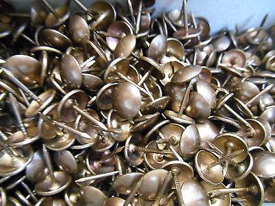 200 Ziernägel//Polsternägel in alt messing 10 mm im Durchmesser