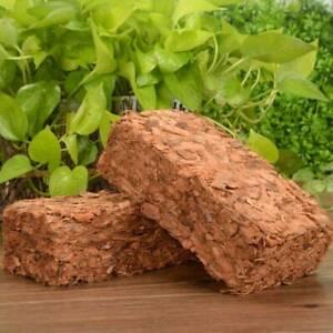 Kokoserde-Aussaaterde-Anzuchterde-Humusziegel-Kokosblumenerde-Pflanzbett