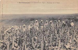 CPA-51-EN-CHAMPAGNE-LE-TRAVAIL-DE-LA-VIGNE-ROGNAGE-DE-LA-VIGNE