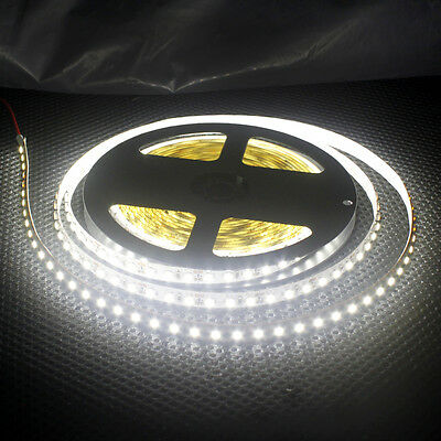 NEW 5M 3528 SMD 600 LED 120LED/M Flexible Strips Lights Cool/Warm White DC12V
