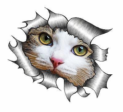 Ripped Torn Metal Look HEART With Grey Cat Kitten Face vinyl car sticker Decal