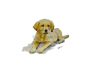print-of-original-watercolour-amp-ink-art-painting-Labrador-puppy-collectible