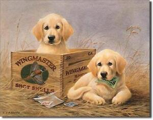 Cute Golden Labrador Retriever Tin Sign Pet Lover Owner Wall Decor