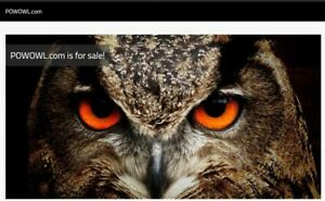 Premium Domain Name  POWOWL.COM  for sale! buy now, or make an offer..