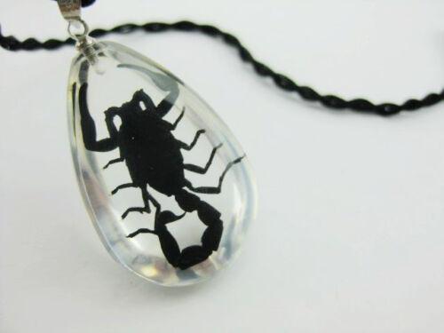 12pc natuer black scorpion fine gift to friend ice MINI drop pendants HOT02