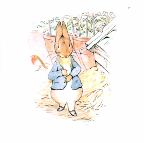 peter rabbit print iron on transfer or sticker choice of 12images BEATRIX POTTER