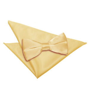 DQT-Satin-Plain-solide-jaune-pale-pour-homme-Pre-Tied-Bow-tie-hanky-Mariage-Set