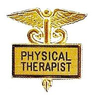 Physical Therapist Pin Gold Inlaid Black Letters Medical Caduceus 3512g