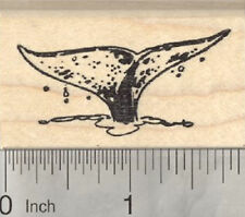 Marine Wildlife J15608 Beluga Whale Rubber Stamp