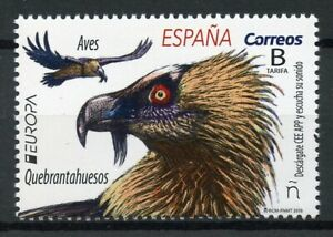 Spain-2019-MNH-Bearded-Vulture-Europa-1v-Set-Vultures-Birds-Stamps