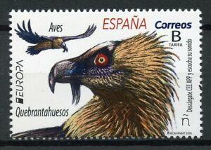 Espana-2019-estampillada-sin-montar-o-nunca-montada-quebrantahuesos-Europa-1v-Set-Buitres-Aves