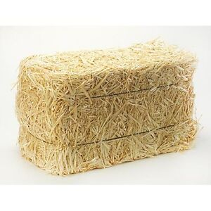 Mini-Straw-Bales-are-made-of-wheat-amp-come-individually-wrapped-Pack-2