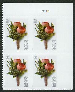 #5199 Flor Ojal, Placa Bloque [B11111 Ur ], Nuevo Cualquier 5=