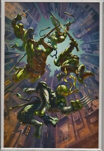 Teenage-Mutant-Ninja-Turtles-98-NM-Virgin-Variant-TMNT-JENNIKA