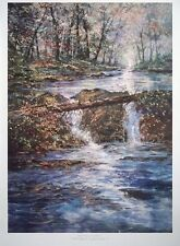 Crystal Silence, Michael Schofield -88x64cm 1992 litho print, stream landscape