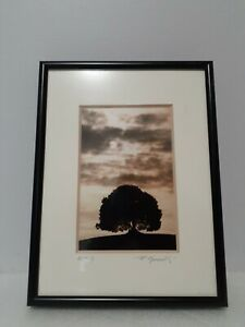 Art Photo by Roberto Messerelli Pieve a Salti Italy 1997 Framed Signed 43/ 100