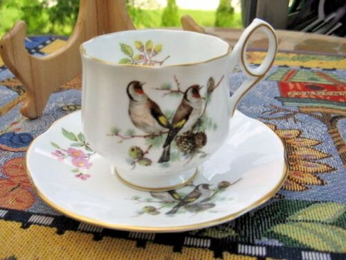 NICE one Cup & Saucer Royal Dover Made England wbird on it white, bird bown red