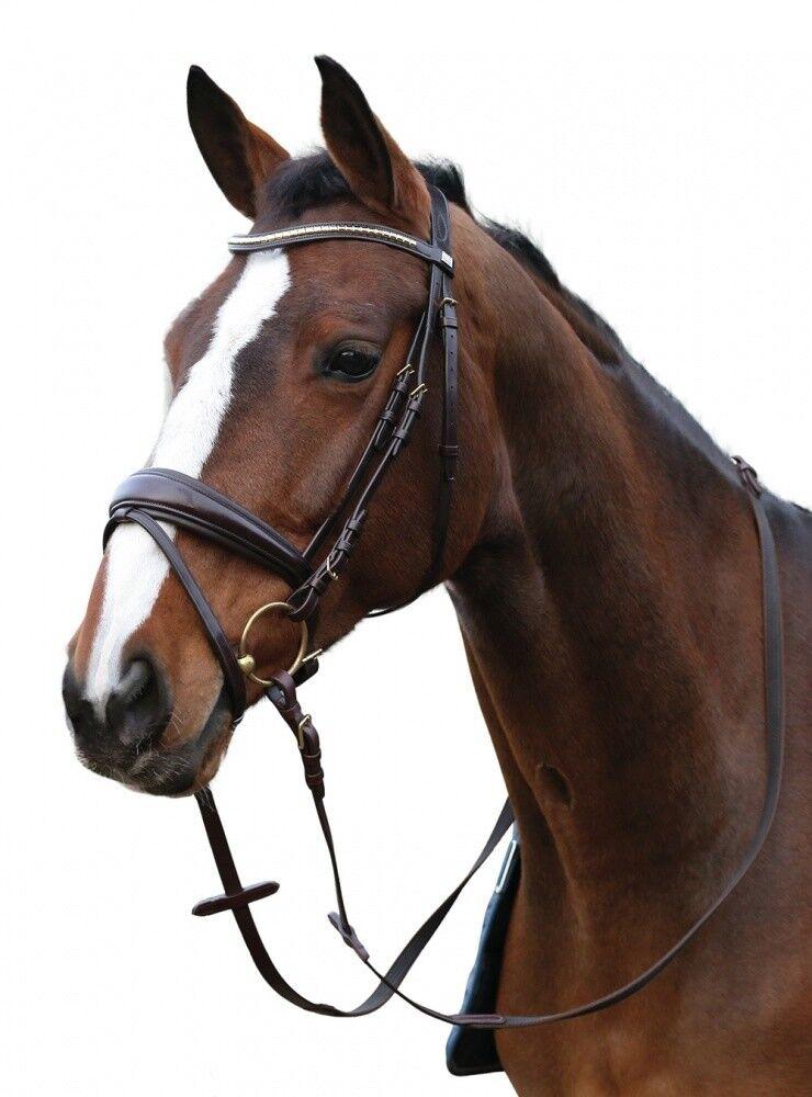 Ergo trensenzaum Scan Horse negro nuevo