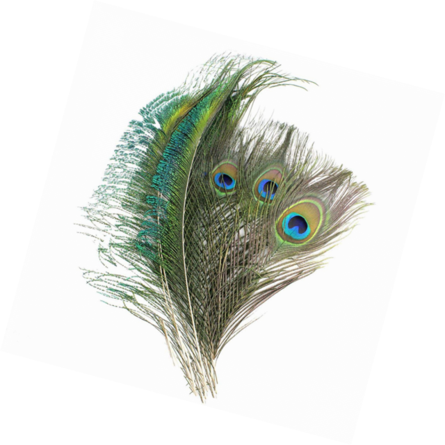Wholesale 10-1000 PCS peacock feathers sword 30-70cm //12-28inches L and R