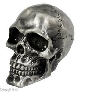 tete-de-mort-crane-garde-boue-moto-skull-bobber-chopper-ornament-silver-fender