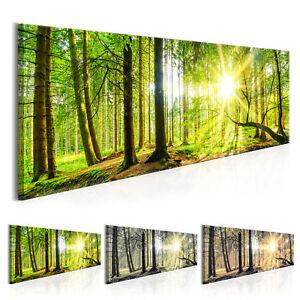 Wandbilder xxl Wald Landschaft Ausblick Leinwand Bilder Wohnzimmer ...