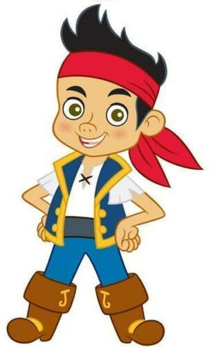 jake and the neverland pirates  VINYL WALL STICKER WALL DECALS