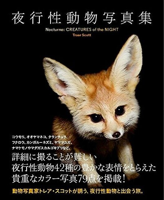 Nocturnal Animal Photo Collection Book
