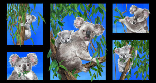 """5 individual Pictures Koalas Cotton Quilting Fabric Panel 23/"""" x 44/"""""""