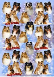 Shetland-Sheepdog-Sheltie-Dog-Christmas-Gift-Wrapping-Paper-by-Starprint