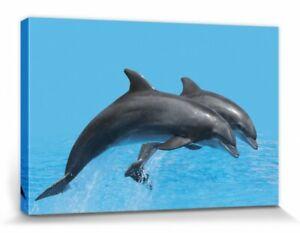 Pärchen Sprung Poster Leinwand-Druck #110232 Delfine 30x20cm