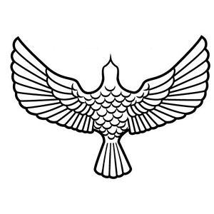 EAGLE-BIRD-OF-PREY-FLYING-CAR-DECAL-STICKER