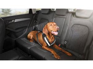 Ceinture de protection pour chien Audi M 8x0019409a Ceinture de sécurité