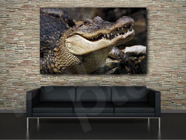 Alligator Crocodile Art Canvas Poster Print Home Wall Decor