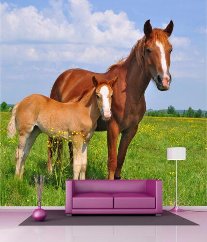 Giant wallpaper mural horses ref 4547