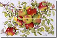 "Ceramic Tile Mural Backsplash Matcham Apples Fruit Kitchen Art 18""x12"" RW-MM001"