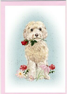 "Christmas Card Cockapoo Dog A6 4/"" x 6/"" Design by Starprint Blank inside"