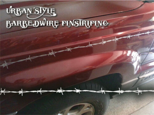 Urban Style 3 Dodge GOLD color Barbedwire Pinstriping Chevy etc. Ford