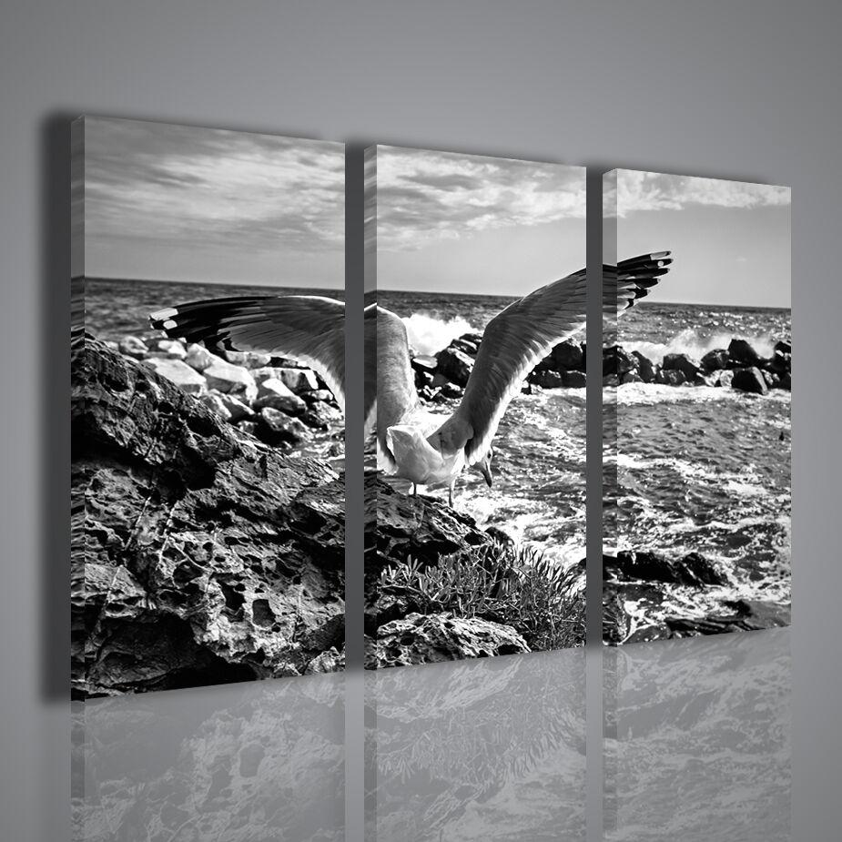 Gabbiano Vernazza 2015 2015 2015 - Foto D'autore Cinque Terre Stampe su Tela per Arrojoare 0c947e