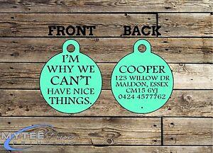 Funny Pet Tags chien ID Im pourquoi nous ne pouvons avoir de belles choses personnalisés Pet ID de la balise-afficher le titre d`origine GTM77Iab-07183358-137772556