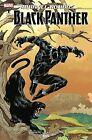 Marvel Action Black Panther #1 Main Cover Juan Samu IDW Shuri 040319