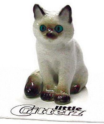 "LITTLE CRITTERZ CAT /""COSEY/"" MAINE COON KITTEN FIGURINE *Mint Condition*"