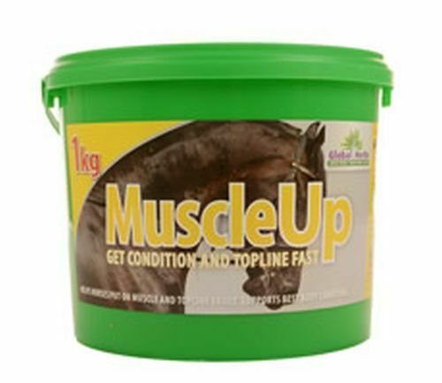 GLOBAL HERBS MUSCLEUP  - 1 KG - GLB0540  order now lowest prices