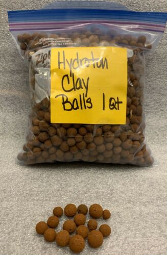 2 Liters // Equivalent to 2 Quarts Orchid Media Hydroton Expanded clay balls
