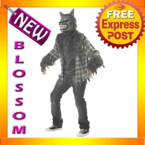 C232 Full Moon Madness Werewolf Mens Adult Halloween Scary Costume
