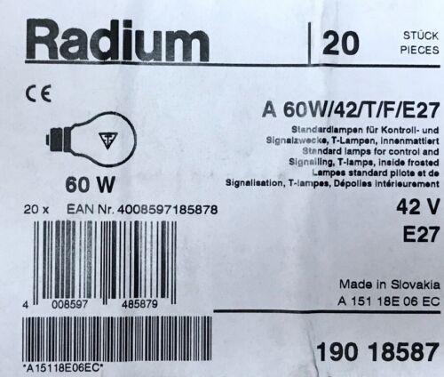 E27 60 Watt LOW VOLTAGE 42V Rough Service Pearl Radium 60W 42 Volt ES