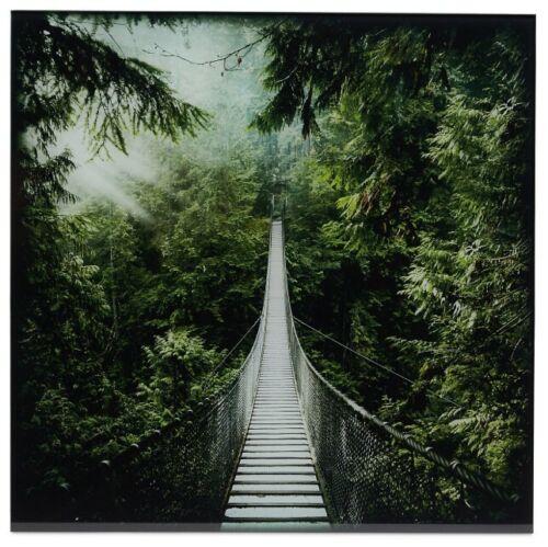 H 450mm rrp £28 Rope bridge Green Unframed glass print 450mm W